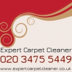 Expertcarpetcleaner250