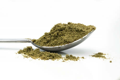 Organic Raw Hemp Protein Powder