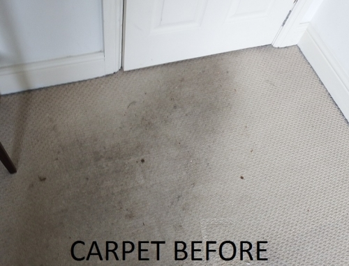 Really well soiled carpet. This had not been professionally cleaned ever. DIY machines had been used but they are hopeless