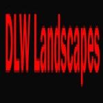 DLW Landscapes