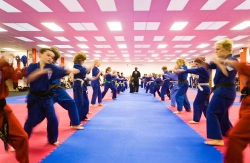 Junior Dragons Karate  Kickboxing Classes 7-12 Years