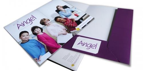 Angel Education Lrg