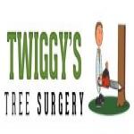 Twiggys Trees