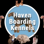 Haven Kennels & Cattery