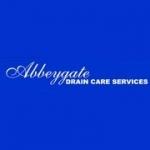 ABBEYGATE DRAIN CARE LTD