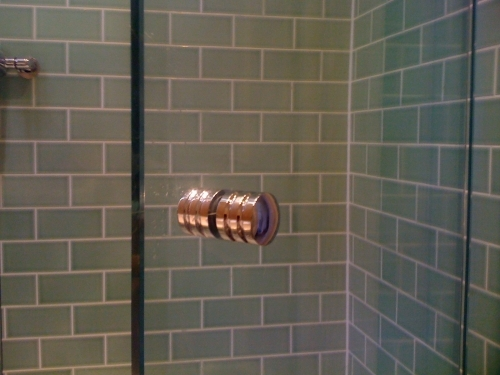 Shower Screen and Handle