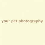 Your Pet Photography - photographers