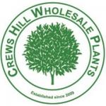 Crews Hill Wholesale Plants Ltd