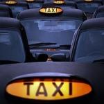 Ants-cab