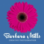 Barbara Mills Creative Photographer - wedding photographers