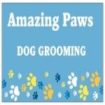 Amazing Paws Dog Grooming