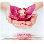 Regent Orchid