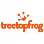 TreeTopFrog SEO Web Design