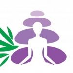 The Holistic Homeopathic Practice