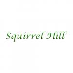 Squirrel Hill Cottage
