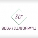 Squeaky Clean Cornwall