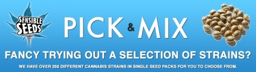 Pick N Mix Sensible Seeds Cannabis Seed offer