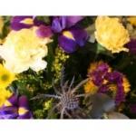 Highworth Flowers