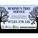 Murphy's Tree Service