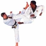 Puma Martial Arts