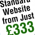 Standard website 333
