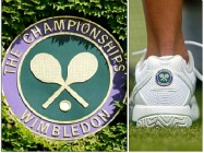 Hotels in Wimbledon, London