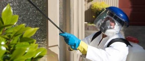 Pest Control Finsbury