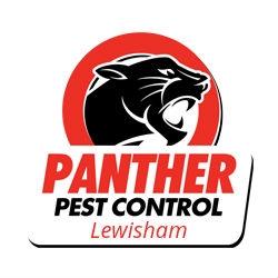 Pest Control Lewisham