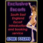 Exclusive Escorts