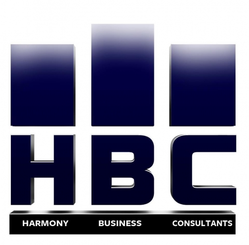 Business Consultants and Advisory Services