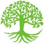 Beeches Tree Care Ltd