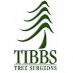 Tibbs Tree Surgeons