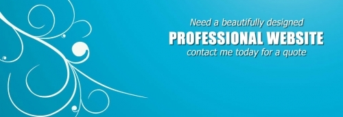 Professional Freelance Web Designer