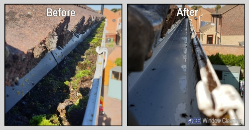 Gutter Clean and Clear