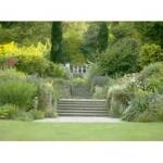 Hampden Gardens