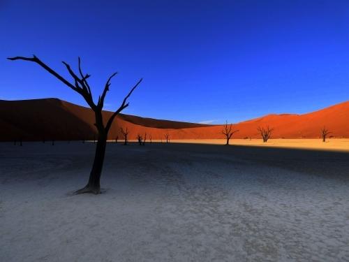 Deadvlei - Namibia