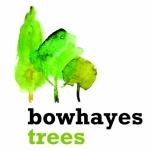 Bowhayes Trees