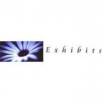 Exhibits Florists - Florsits In Newcastle Under Lyme