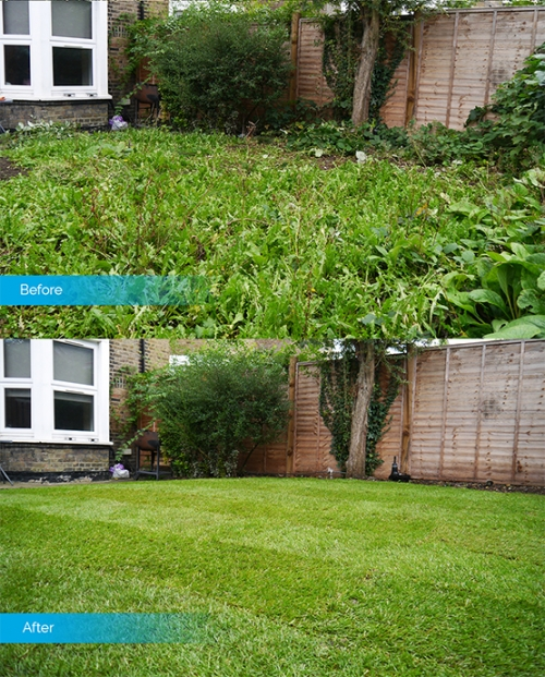 Gardening St Albans