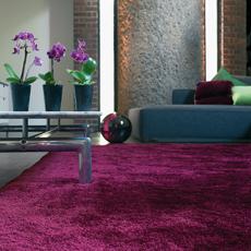 Purple / Violet Rugs