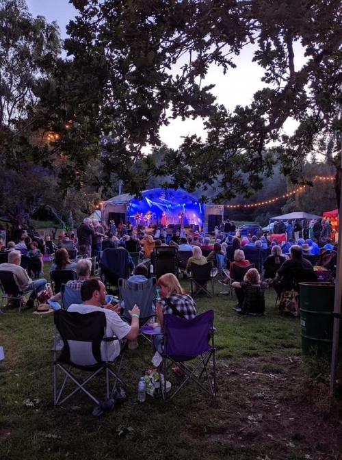 Folk in a Field Festival 2019