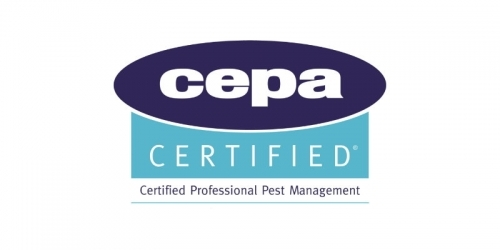 Pest Solutions Edinburgh Cepa Accredited Pest Control Company
