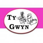T Y Gwyn Boarding Kennels & Cattery