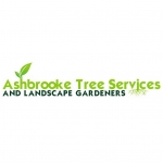 Ashbrooke Tree Services