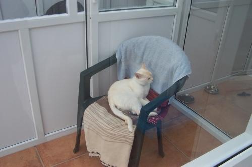 A customer relaxing